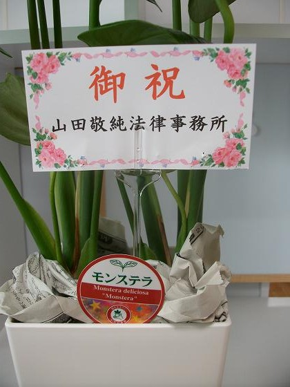 s-hana20131012 (2)